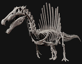 3D Spinosaurus Full Skeleton Sculpt Model