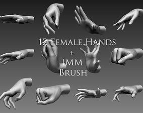 3D 12 Female Hands