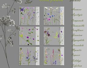 3D asset A set of textures wild flowers