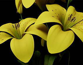 3D a YELLOW Lily