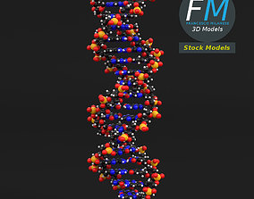 3D model DNA molecule