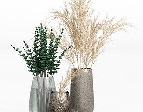 3D model Pampas and Eucalyptus Branches in