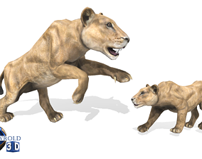 animated realtime Lion Female Rigged Animated 3D Model