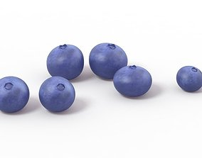 Blueberry Blueberries 3D