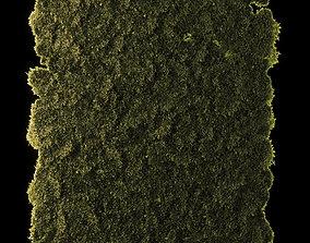 3D asset Moss Disk Set Low Poly