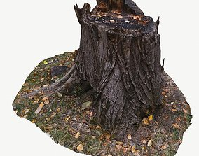 low-poly 3D scan BPR tree stump 02