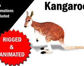 3D model Kangaroo Rigged and Animated