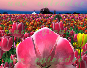 tulip flower sea 3D asset