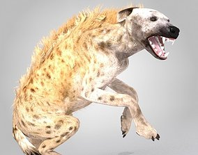 3D asset Hyena Rigged And Animated