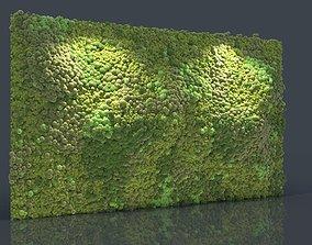 nature 3D model Moss Wall