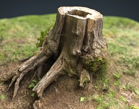 Tree Stump 4 3D model