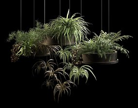 3D Hanging Pots with Plants 2