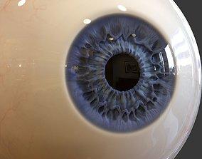 3D anatomy Human Eye