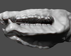3D model Rhino Mouth ZBrush Sculpt