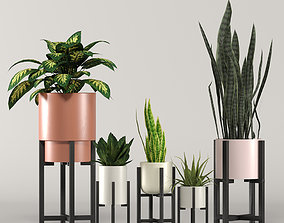 3D stratton home decor plant box collection