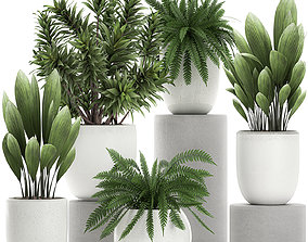 Plants in a white pot for the interior 680 3D