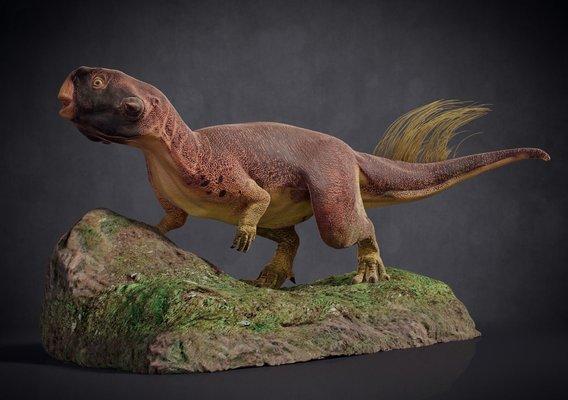Psittacosaurus / 3D print sculpture