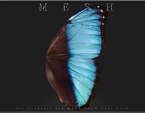 3D asset Butterfly wings 02