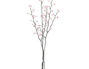 Flowering Tree Twigs in Glass Vase 3D