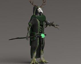 Druid 3D asset