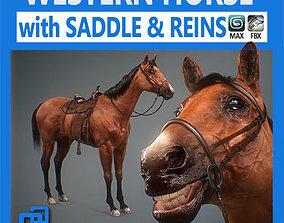 Western Horse 3D