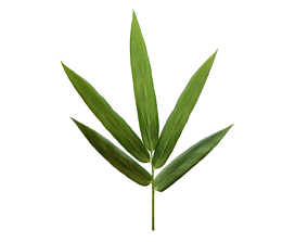 Bamboo leaf 3D model