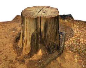 3D model Tree Stump II
