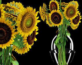 Sunflowers 3D