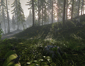 Hazy Hills - Conifer Forest Environment 3D asset