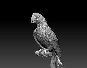 bird parrot 3D printable model