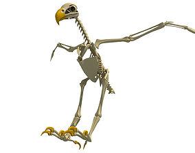 3D Full Body Eagle Skeleton