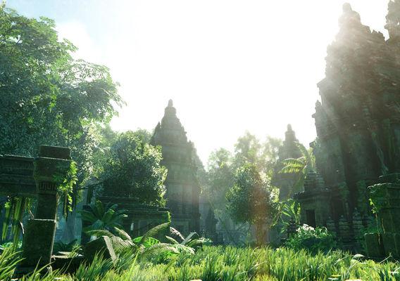 Tropical Jungle Temple of Light