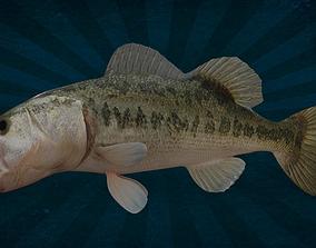 IpoyPunk - ANML-0003 Bass Fish 3D model