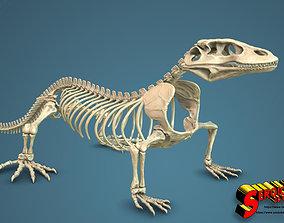 3D print model Komodo Dragon Skeleton