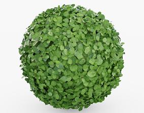 3D model Topiary Bush Round