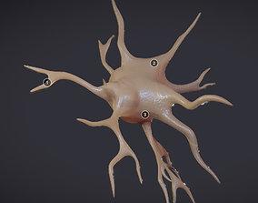 Nerve glial cell Microglia 3D asset