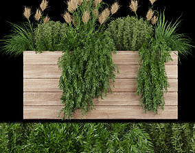3D Collection plant vol 116