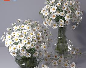 3D Realistic Daisy Chamomile Bouquet Vase