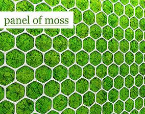 Fytowall moss 3D 2