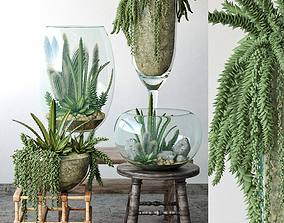 3D model Small Garden in Glass Bowl