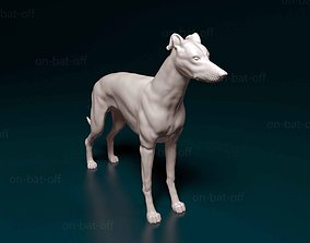 3D printable model Greyhound greyhound