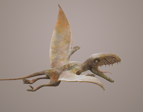 3D asset Dimorphodon with Animation