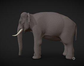 3D asset Asian Elephant male Base Mesh