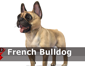 Dog - French Bulldog 3D asset animated