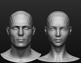 3D model LowPoly Male and Female head