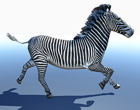 Zebra 3D Model rigged animated low-poly