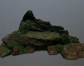 plant 3D asset realtime rocks