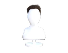 CG hair 3D model