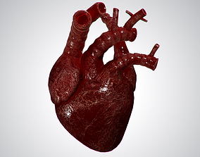 3D asset Heart OverBlooded Rigged Animated PBR