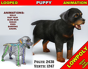 Puppy Rottweiler 3D asset